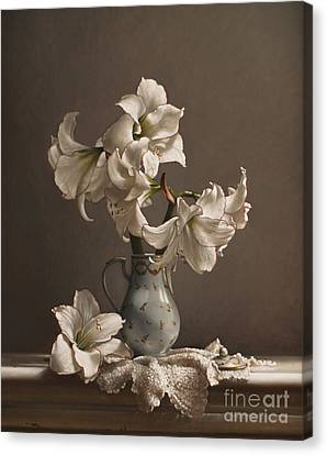 Amaryllis In A French Chocolate Pot Canvas Print by Larry Preston