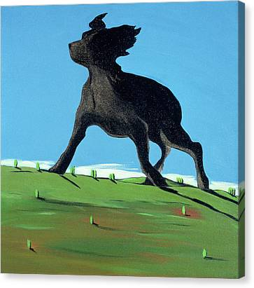 Amazing Black Dog, 2000 Canvas Print by Marjorie Weiss