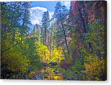 Amazing Color Canvas Print by Brian Lambert