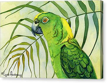 Amazon Canvas Print by Lyse Anthony