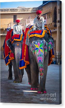 Amber Fort Elephants Canvas Print by Inge Johnsson