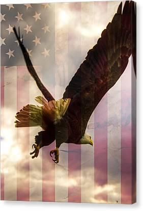 American Bald Eagle In Flight Wtih Flag Canvas Print by Natasha Bishop