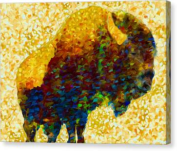 American Bison Canvas Print by Jack Zulli