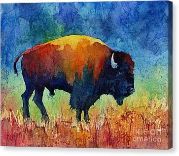 American Buffalo II Canvas Print by Hailey E Herrera