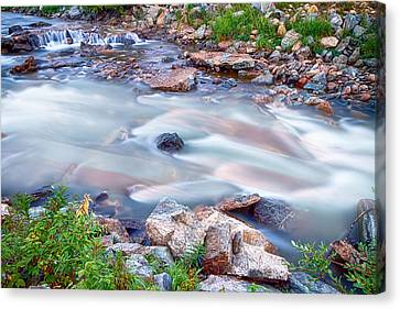 American Stream Reflections Canvas Print by James BO  Insogna