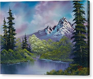 Amethyst Evening Canvas Print by C Steele