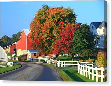 Amish Barn In Autumn Canvas Print by Dan Sproul