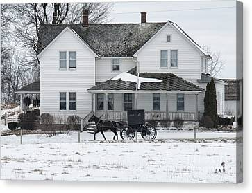 Amish Buggy And Amish House Canvas Print by David Arment