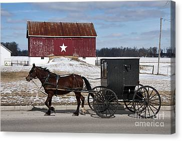 Amish Buggy And The Star Barn Canvas Print by David Arment
