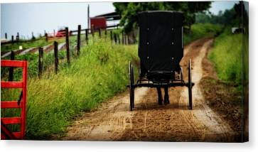 Amish Buggy On Dirt Road Canvas Print by Dan Sproul