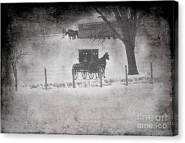 Amish Buggy Winter January 2014 Canvas Print by David Arment
