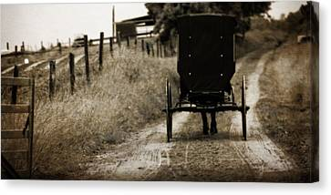 Amish Horse And Buggy Canvas Print by Dan Sproul