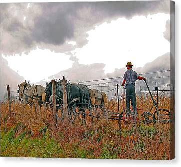 Amishman Driving Plow Canvas Print by Brian Graybill
