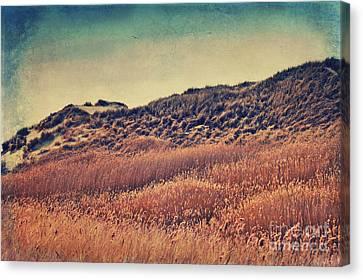 Amrum Dunes Canvas Print by Angela Doelling AD DESIGN Photo and PhotoArt