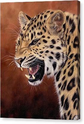 Amur Leopard Painting Canvas Print by Rachel Stribbling