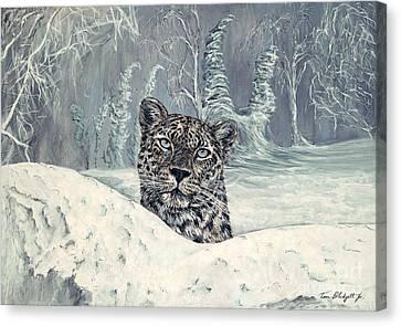 Amur Leopard Canvas Print by Tom Blodgett Jr