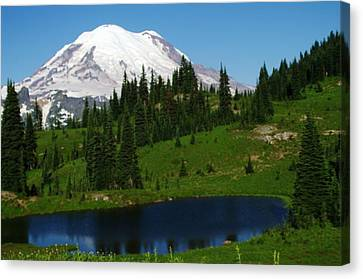 An Alpine Lake Foreground Mt Rainer Canvas Print by Jeff Swan