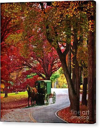 An Amish Autumn Ride Canvas Print by Lianne Schneider