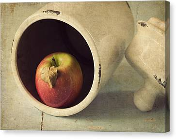 An Apple A Day... Canvas Print by Amy Weiss