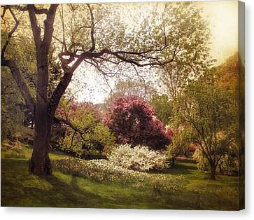 An Early Spring Canvas Print by Jessica Jenney