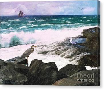 An Egret's View Seascape Canvas Print by Lianne Schneider