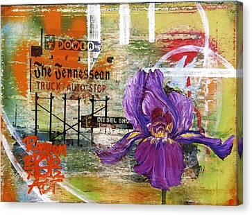 An Iris For The Tennessean Canvas Print by Andrea LaHue aka Random Act