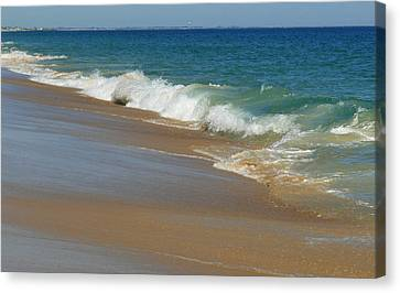 An Ocean View  Canvas Print by Neal  Eslinger
