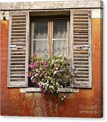 An Old French Window Canvas Print by Olivier Le Queinec