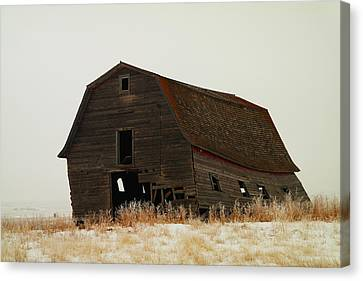 An Old Leaning Barn In North Dakota Canvas Print by Jeff Swan