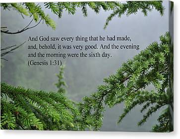And God Saw Canvas Print by Tikvah's Hope