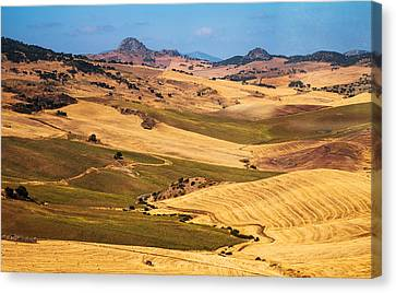 Andalusian Patchwork Fields I. Spain Canvas Print by Jenny Rainbow