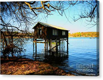 Anderson Island Historic Boathouse Canvas Print by Cheryl Young