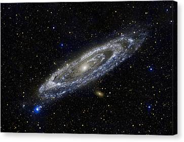 Andromeda Canvas Print by Adam Romanowicz