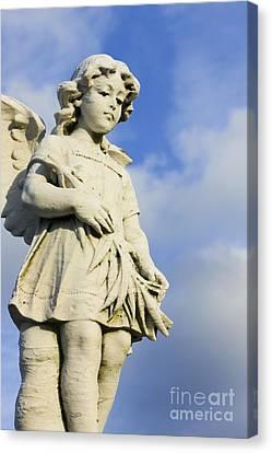 Angel 2 Canvas Print by Sophie Vigneault