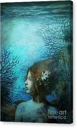 Angel Canvas Print by Aimee Stewart