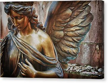 Angelic Contemplation Canvas Print by Terry Rowe