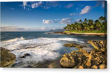Angry Ocean Canvas Print by Tin Lung Chao