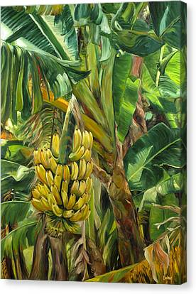Annie's Bananas Canvas Print by Stacy Vosberg