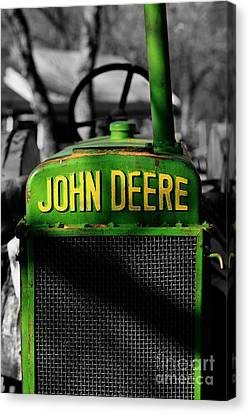 Another Deere Canvas Print by Cheryl Young
