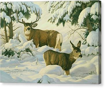 Another Season Canvas Print by Paul Krapf