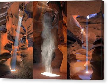 Antelope Triptych Canvas Print by Patrick Jacquet