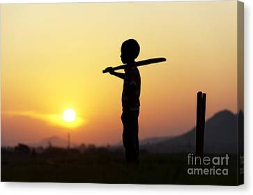 Any One For Cricket Canvas Print by Tim Gainey