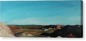Anza - Borrego Desert Canvas Print by Joseph Demaree