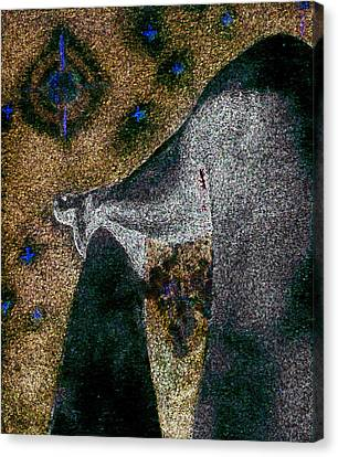Aphrodite Holds Council With The Pleiades Canvas Print by Nova Cynthia Barker