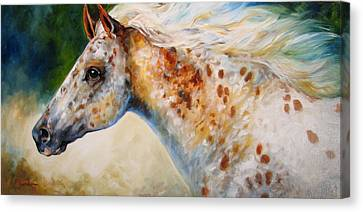 Appaloosa Spirit 3618 Canvas Print by Marcia Baldwin