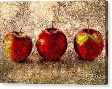 Apple Canvas Print by Bob Orsillo