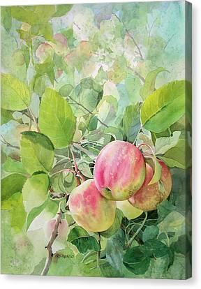 Apple Pie Canvas Print by Kris Parins