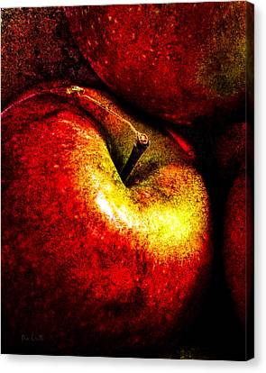 Apples  Canvas Print by Bob Orsillo
