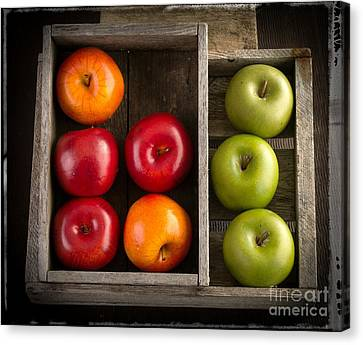 Apples Canvas Print by Edward Fielding