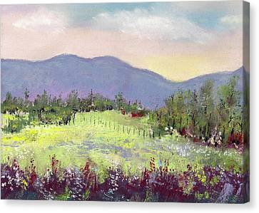 Approaching Home Canvas Print by David Patterson